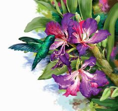 7 das Artes: Flores em óleo sobre tela.