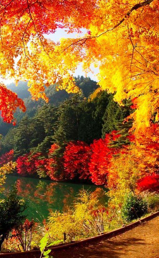 Lake Yamanaka near Mount Fuji - Yamanakako, Japan Autumn
