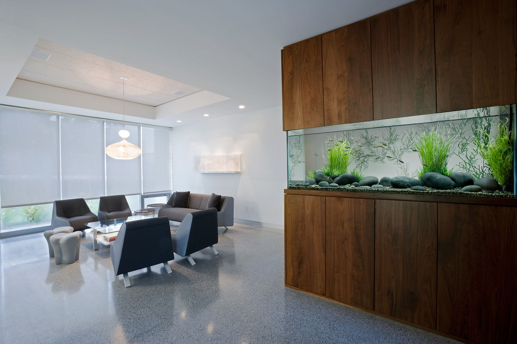 Transform The Way Your Home Looks Using A Fish Tank Living Room