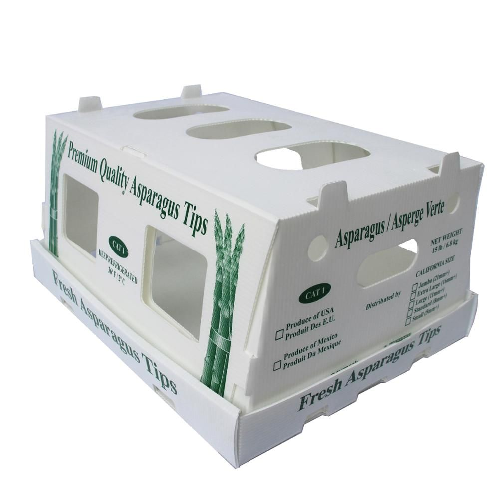 Multifunction Container Durable Fresh Pp Fruit Vegetables Box
