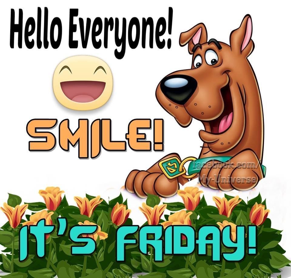 Smile It S Friday With Images Its Friday Quotes Good