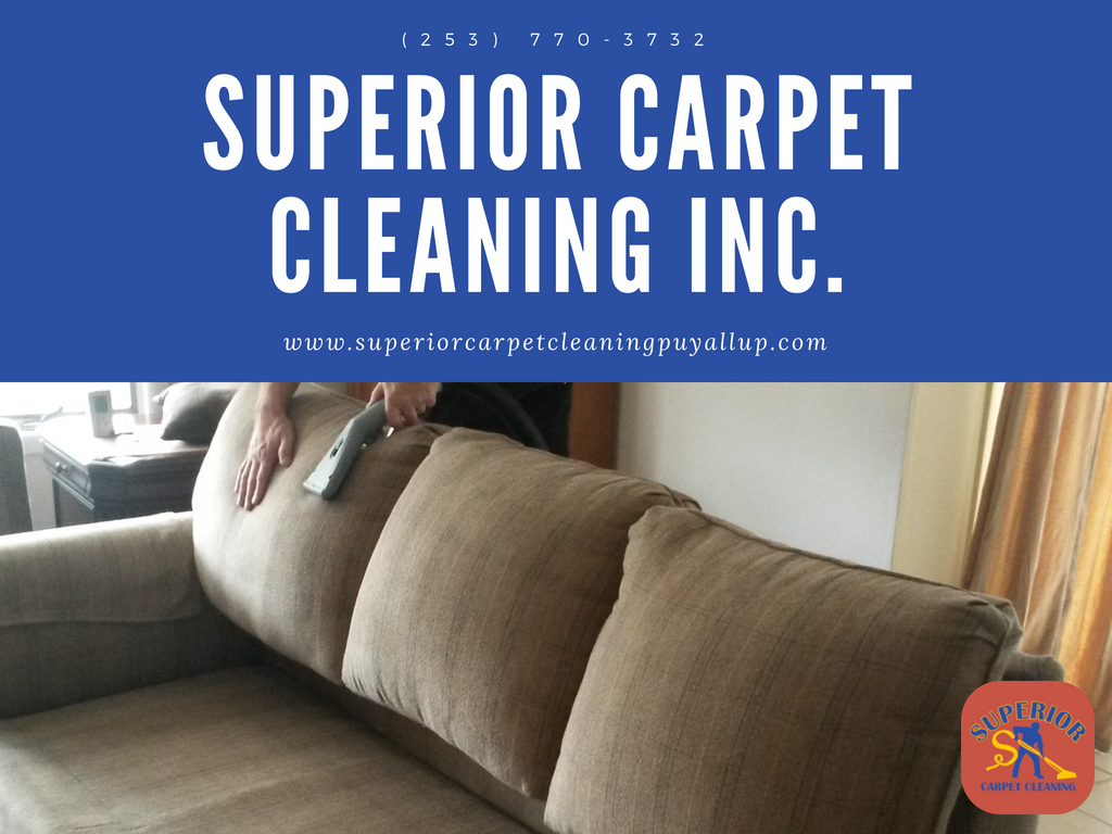 Carpetsteamcleaning Upholsterycleaning Airductcleaning Tilecleaning Groutcleaning Petstainremoval Odorr Cleaning Gutters Clean House How To Clean Carpet