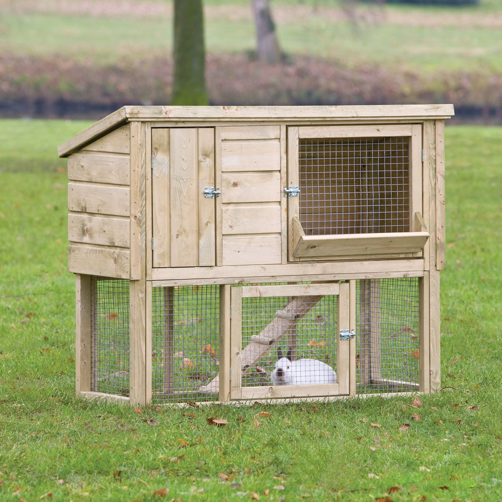 rabbit-hutch | Flemish giant