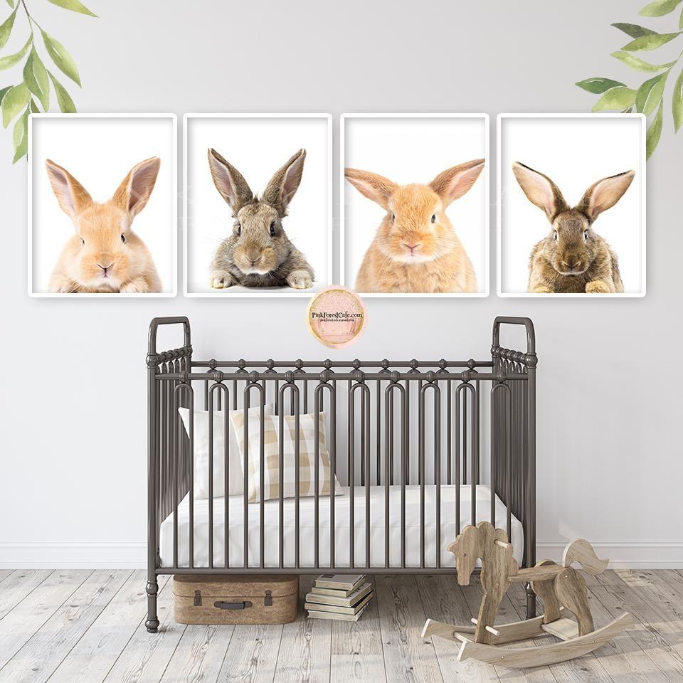 SALE 4 Bunny Rabbit Wall Art Print Woodland Nursery Baby Room Set Lot Prints Pri… Baby room