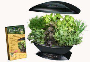 Aerogarden Gourmet Herb Seed Kit 6 7 Pod By Aerogrow 400 x 300