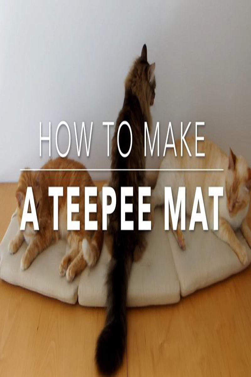 How to Make a DIY Cat Teepee Mat in 30 mins Cat teepee