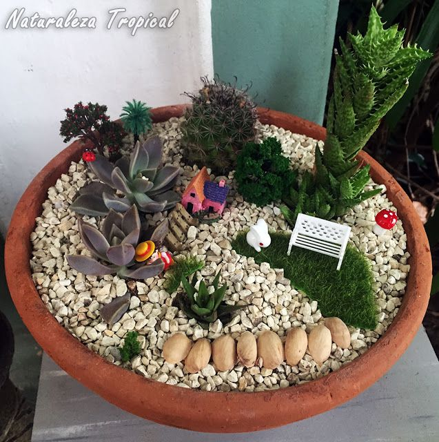 Otra decoraci n con plantas suculentas en macetas for 5 plantas decorativas