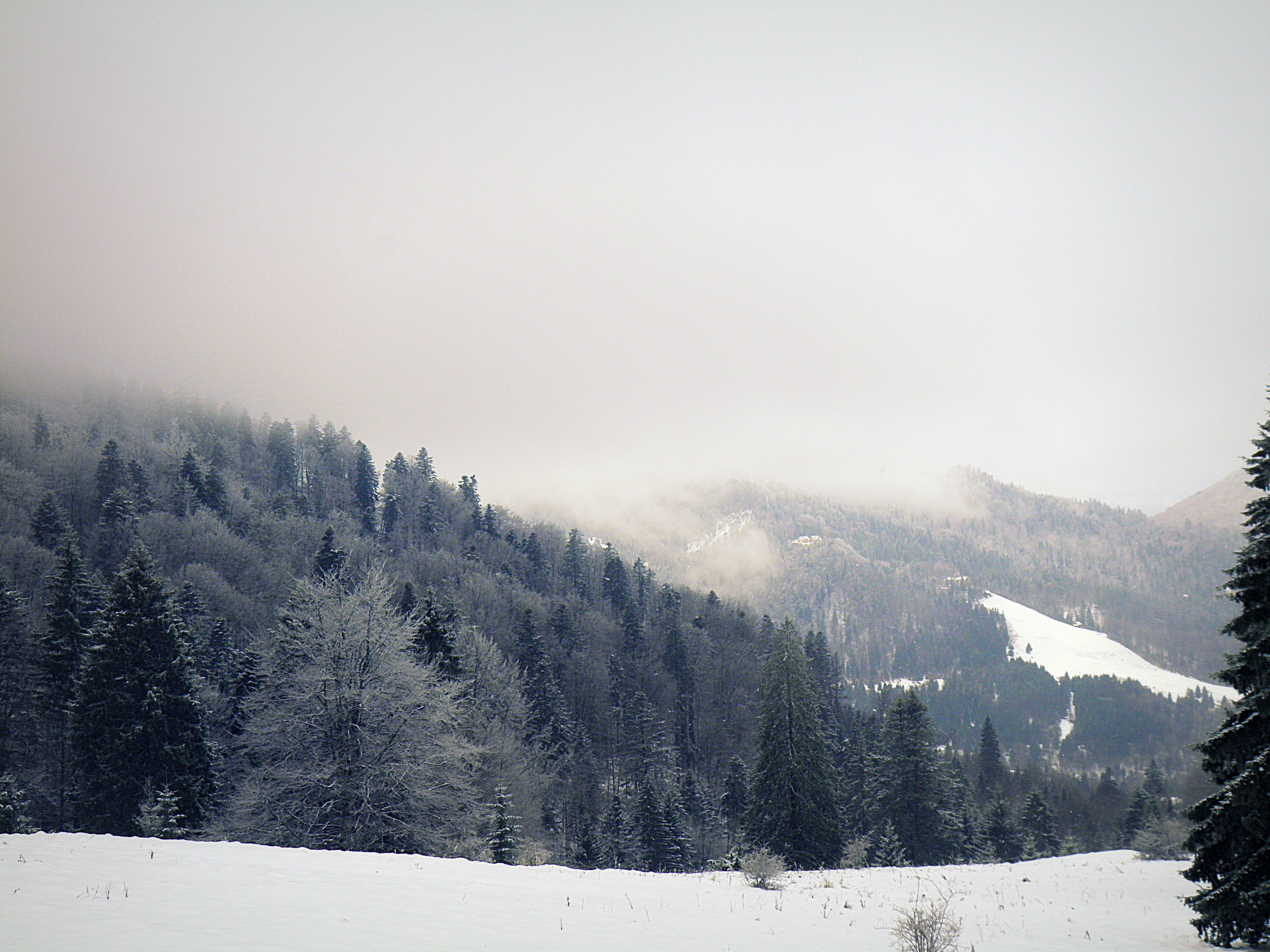 predeal romania christmas winter landscape