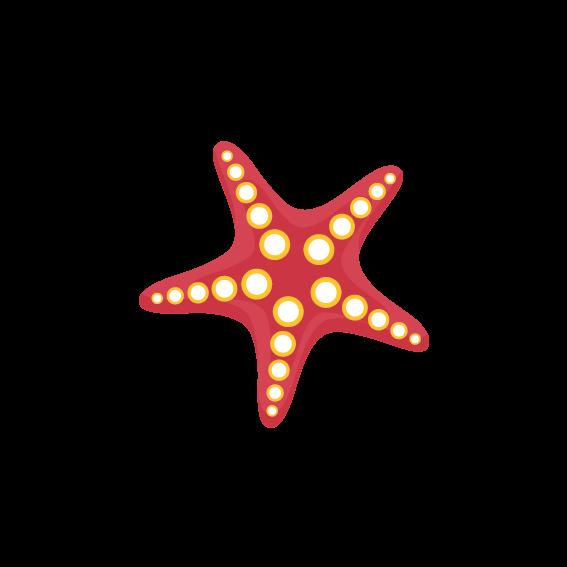 Starfish Images Clip Art Starfish Transparent Png Image Clip Art Batik Pattern Image