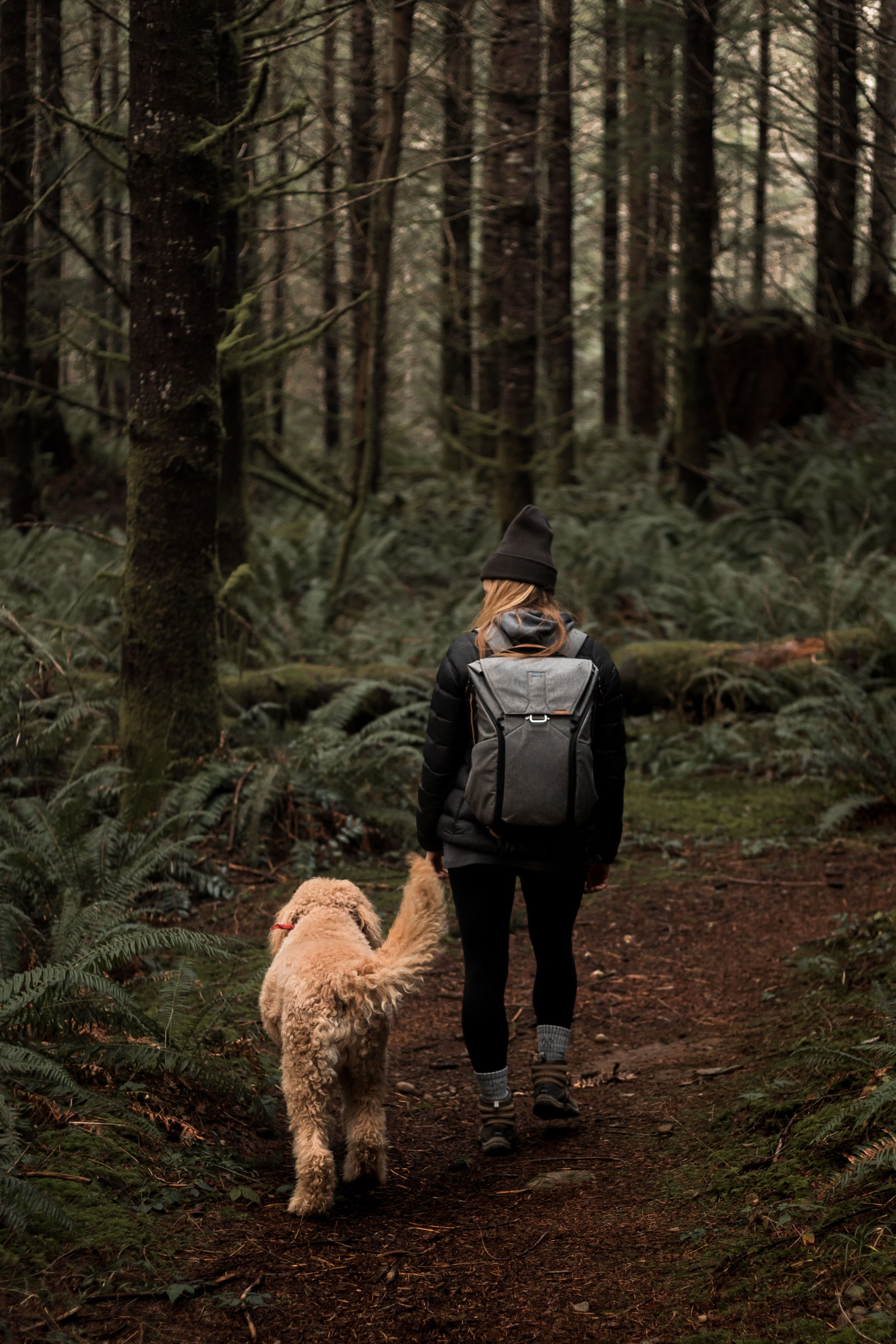 A pacific northwest adventure. A girl and her goldendoodle. #adventure #goldendoodle #washington #pacificnorthwest #outdoors