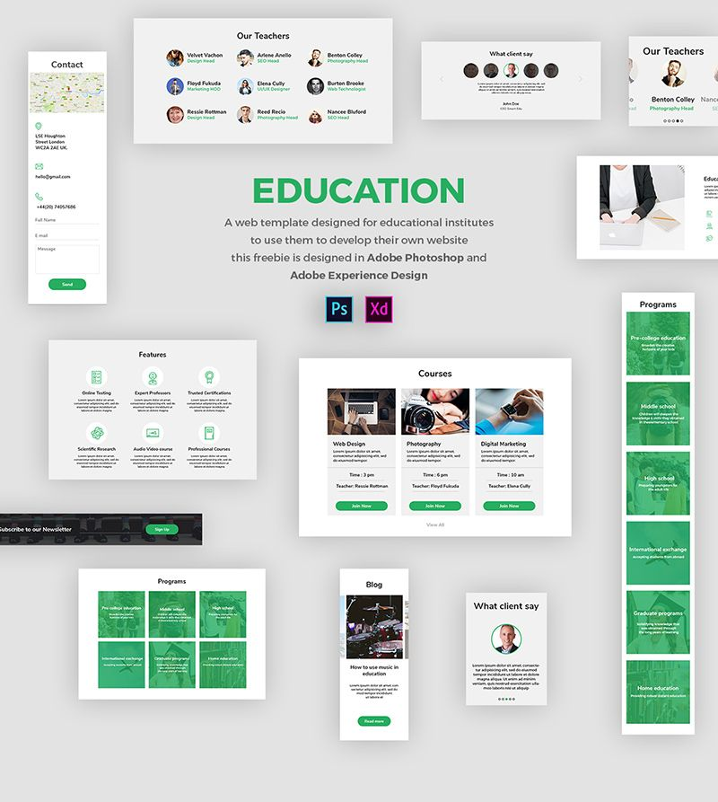 Educational Insute Website Template Adobe Xd Freebie