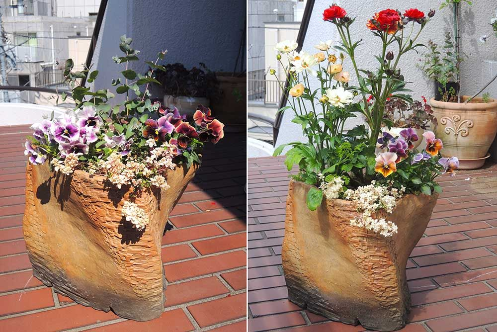 庭に個性をプラス 陶芸家が創作する植木鉢と 寄せ植え植物 植物