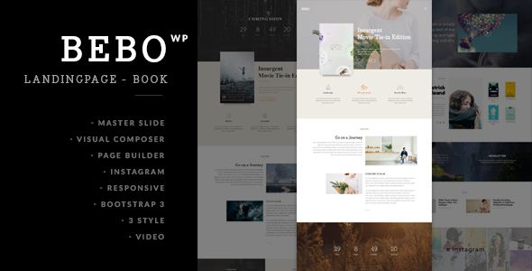BEBO - Book/eBook/ISSUE + Author Landing Page | Wordpress, Template ...