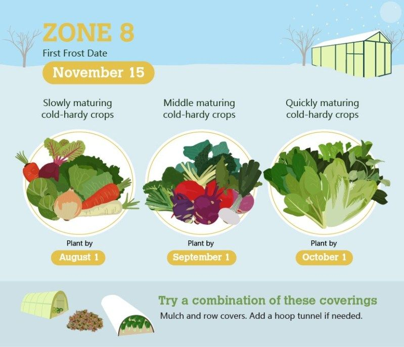 3 Quick Winter Gardening Tips For Zones 4 To 9 With Images