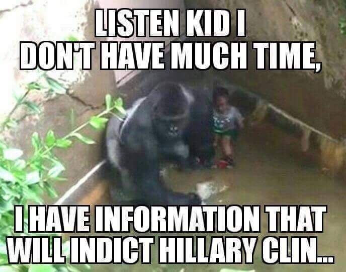 the only harambe post that made me laugh meme collection