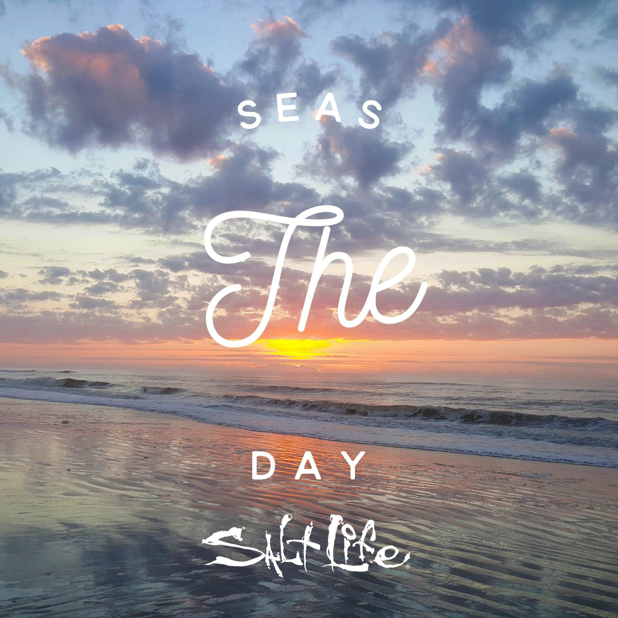 Seas the day SaltLife (With images) Beach quotes, Beach