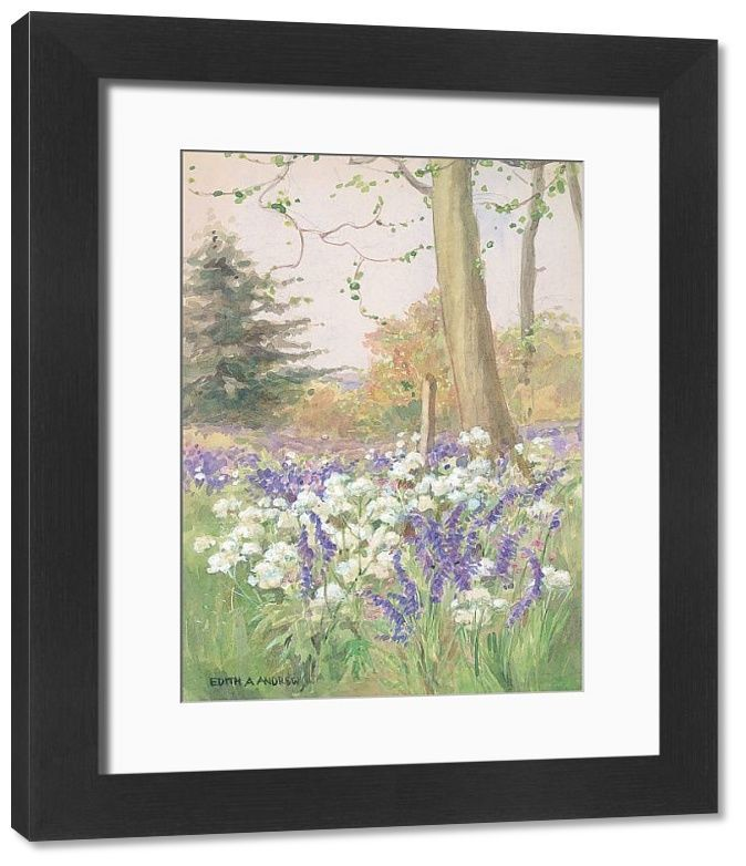 Photo of Framed Print-Spring in the Meadow – Gardens-14″x12″ inch Frame and mount made in the UK