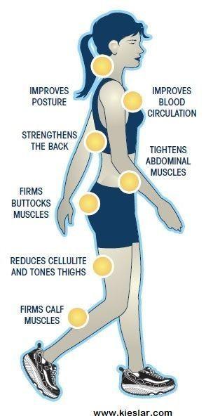 #benefits #walking #fitness #health #beauty #harry #marry #with #ofHealth Benefits Of Walking Health...