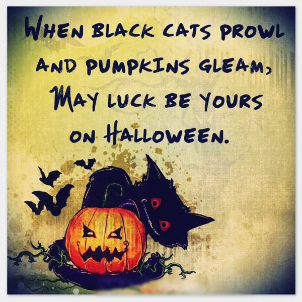 Superior Happy Halloween Saying 2017: Itu0027s Best And Funny Halloween Sayings For You  To Enjoy The