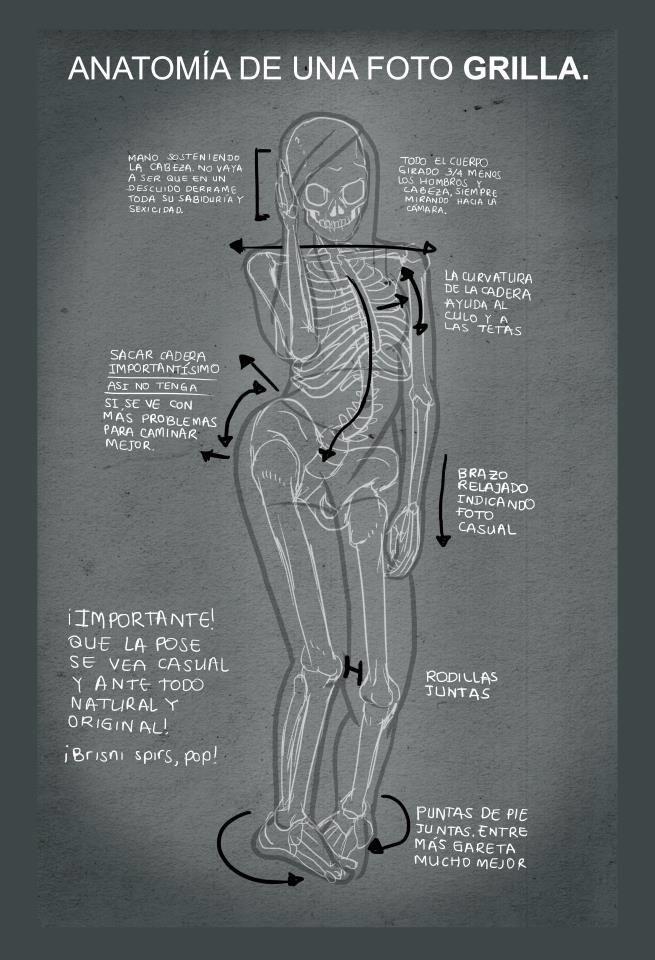 Anatomía foto grilla | Fun | Pinterest | Anatomía