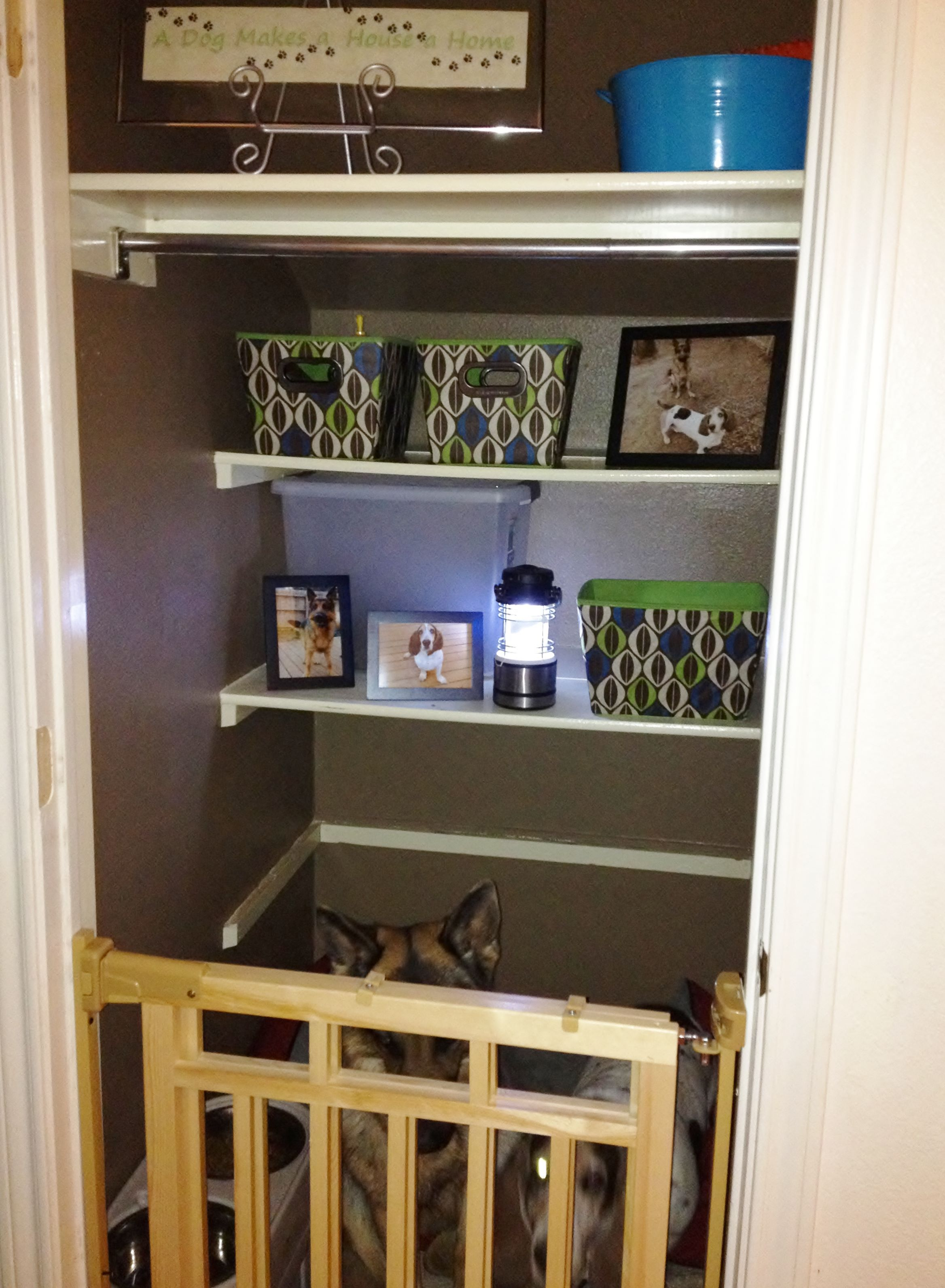 Making A Closet Into A Dog Room... Love It But Wish It Were A Larger, Nicer  Than A Kennel