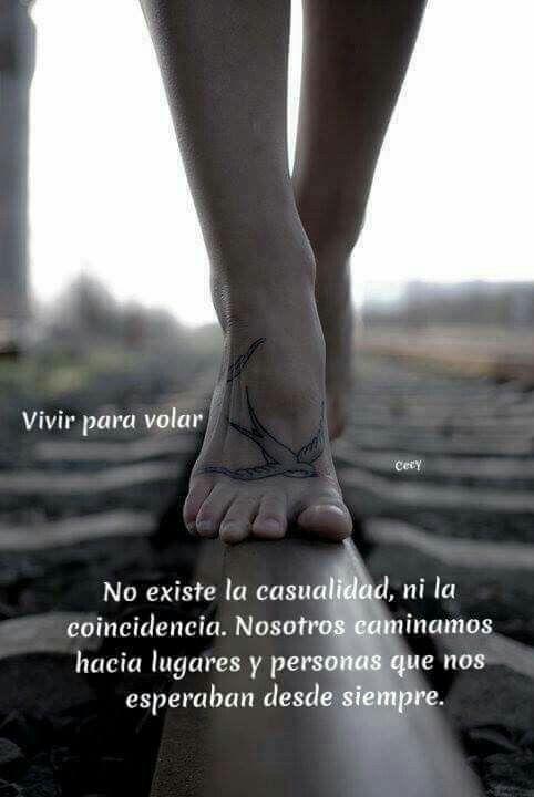 No Existen Casualidades Frases Frases De Sentimientos Y