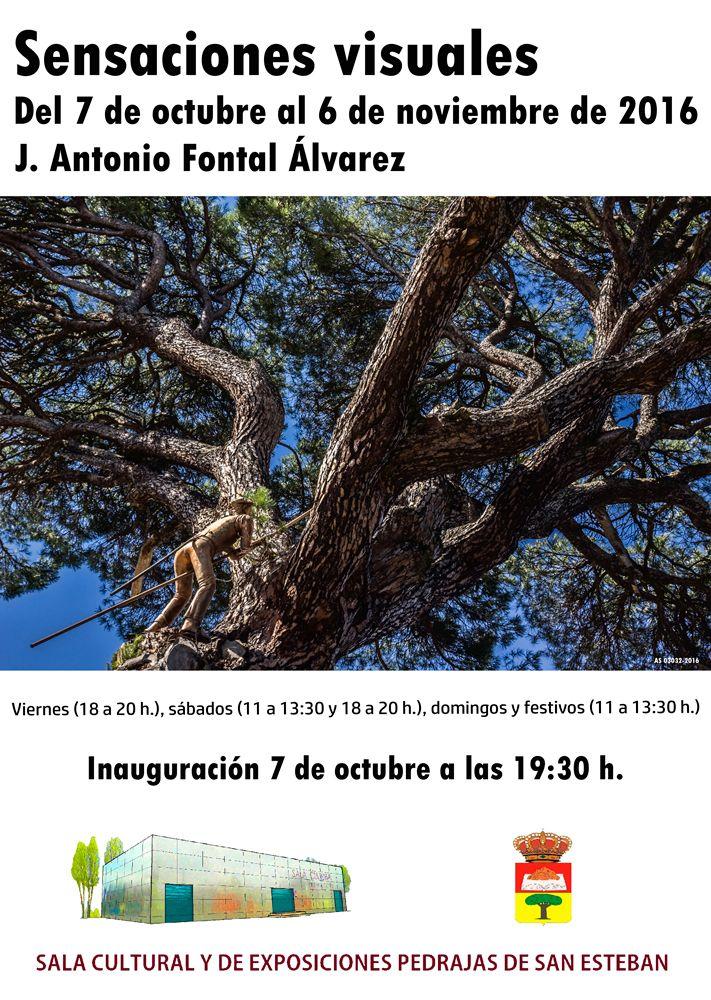 Exposición de Fotografía Artística: Sensaciones visuales