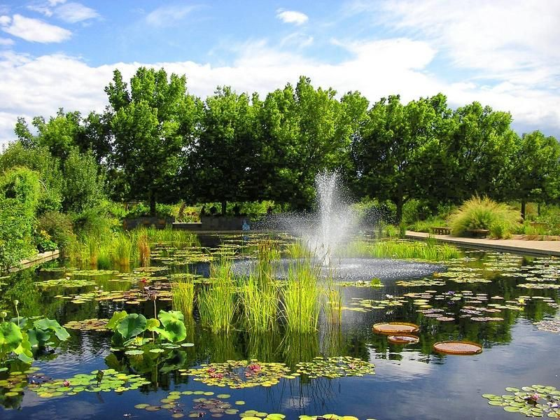 Charmant Denver Botanical Gardens Would Be A Great Proposal Location. Just Make Sure  To Include Some Personalized Details To The Proposal