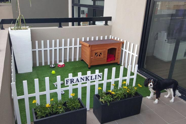 How To Make Apartment Balconies Dog Friendly Dog Rooms