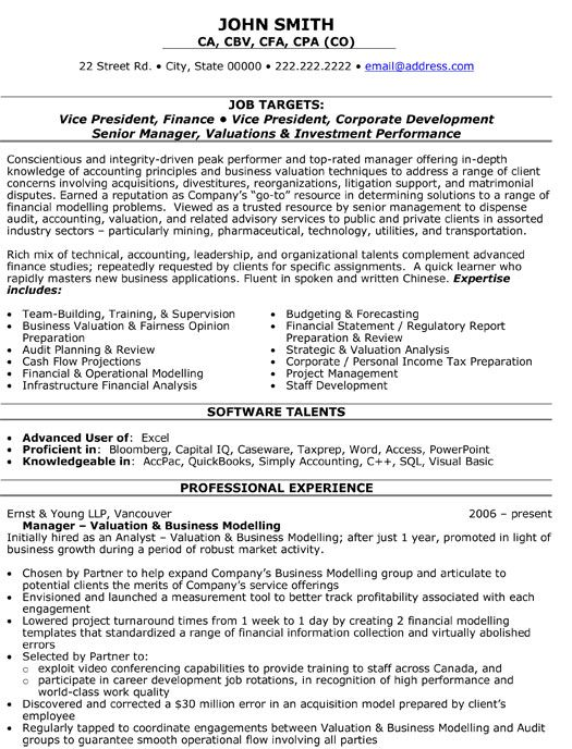 A professional resume template for a Vice President of Finance Want