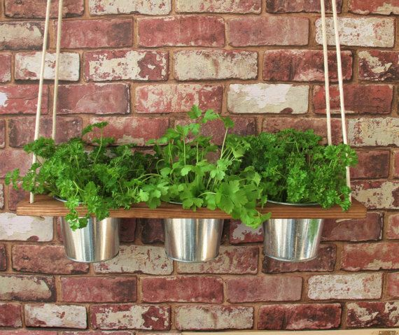 With one, two or three shelves, this planter will fit into any ...