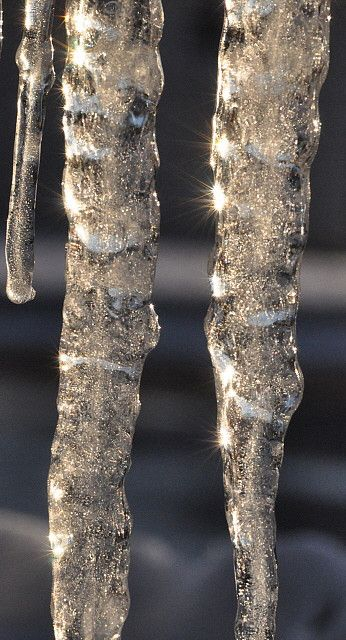 photography theme: winter wonderland - Icicles, very close up