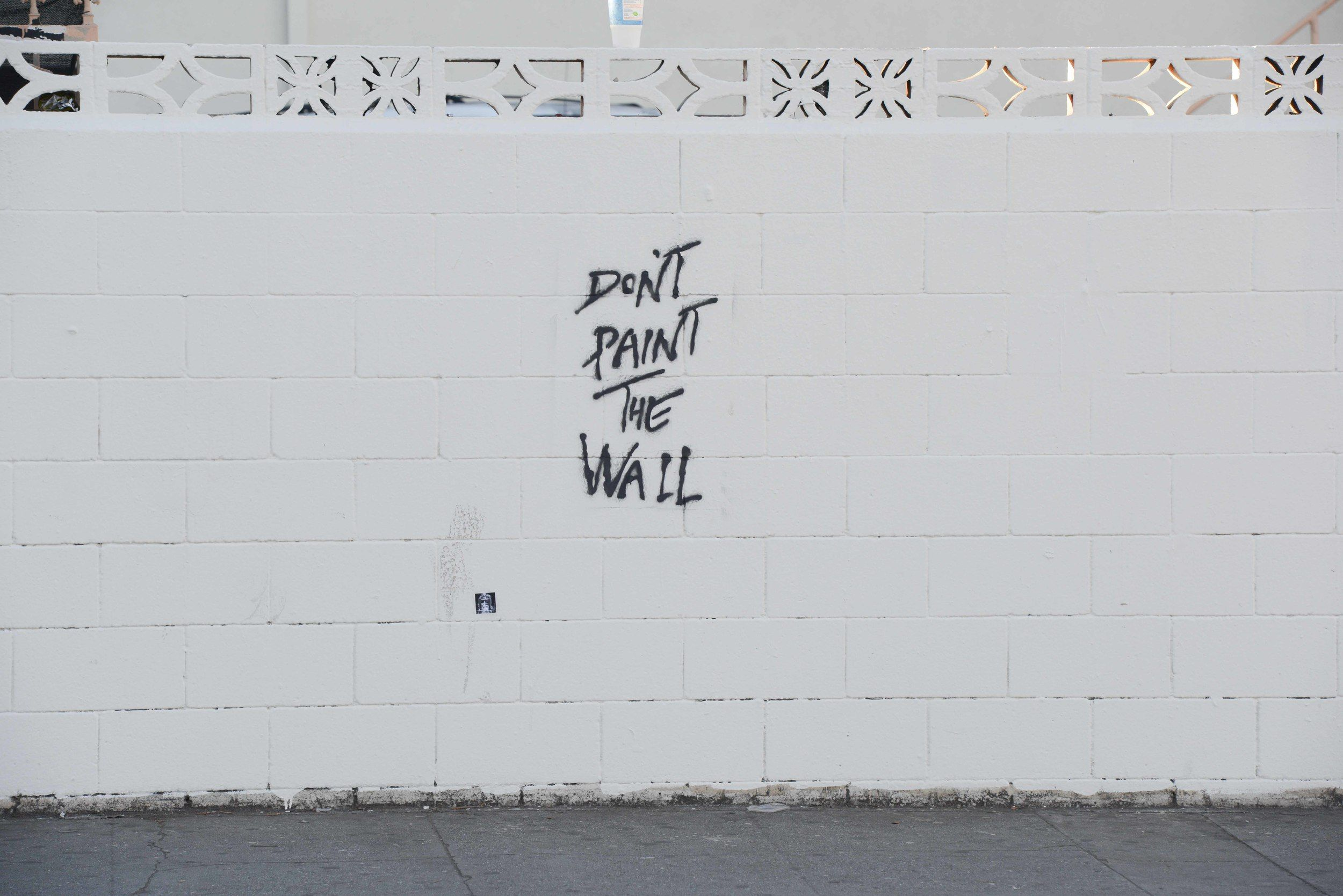 Pj dont paint the wall 1g the earth without art is just eh pj dont paint the wall 1g amipublicfo Gallery