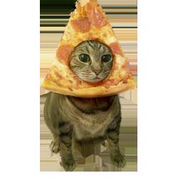 ThePizzacat