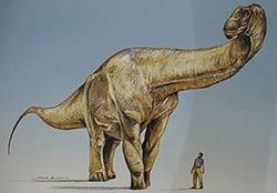 """Argentinosaurus Huinculensis"""