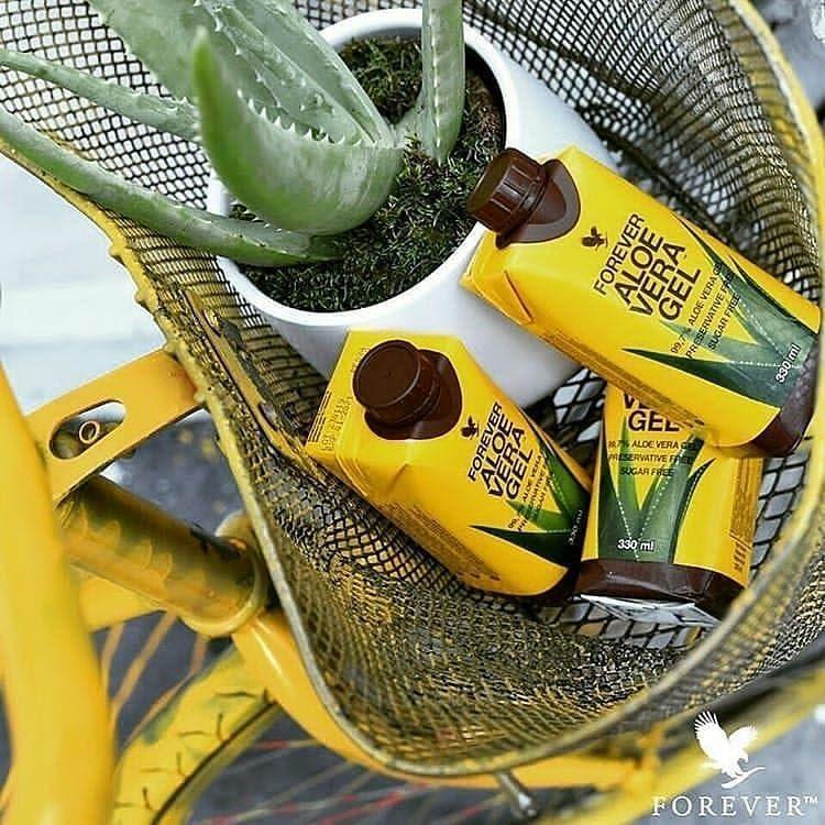عصير الالوفيرا بدون إضافات مكوناته لب الألوفيرا بنسبة 97 ماء نقي بنسبة 3 عصير لب الصبار Forever Aloe Forever Living Aloe Vera Forever Living Products