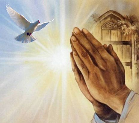 Image result for praying hands and a dove free image