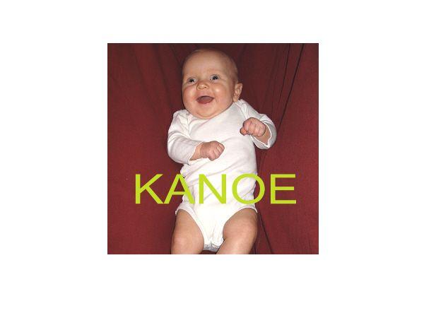 kanoe baby hammock  kanoe baby hammock     bellies birth  u0026 boobies   pinterest      rh   pinterest