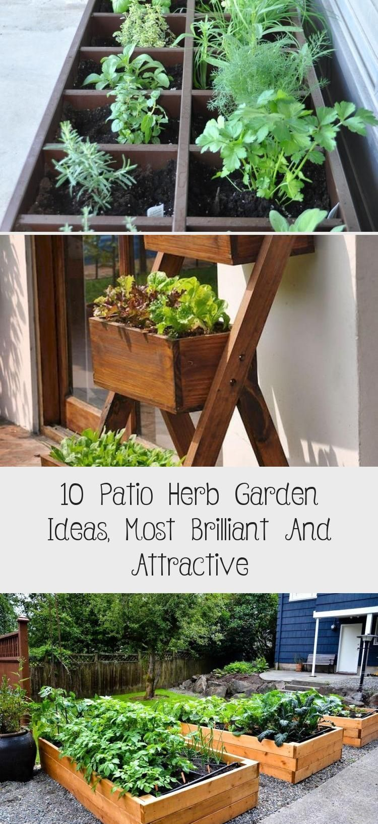 A Comprehensive Overview On Home Decoration In 2020 Indoor Herb