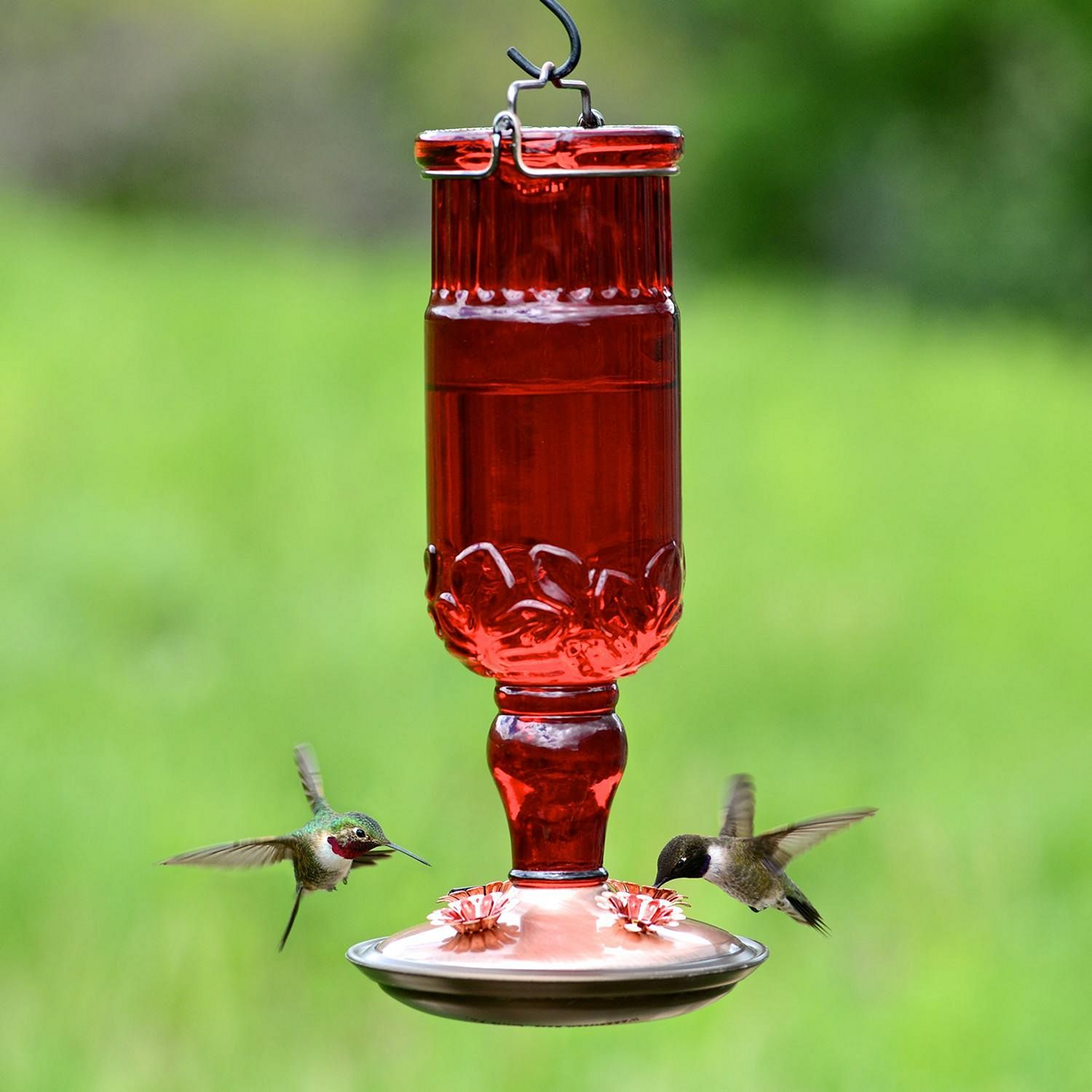 Sublime Make Your Own Hummingbird Feeder With 25+ Our Best