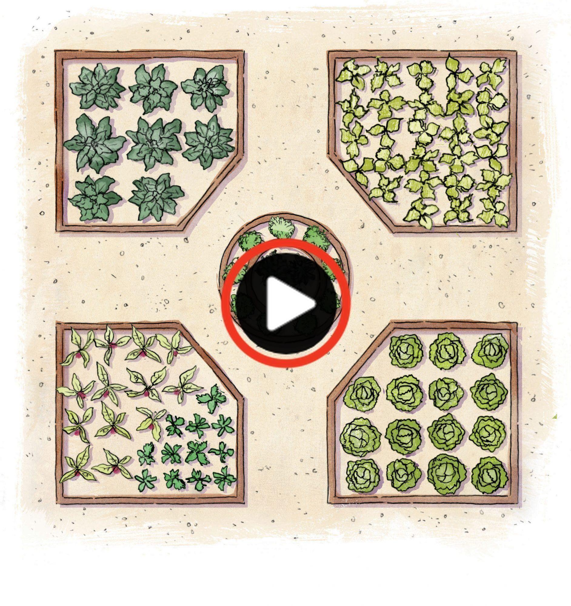 Essbare Garten Essbaren Garten 23163 50914 Edible Layout Edible Garden The Garten Edible Garden Garden Layout Vegetable Garden Design
