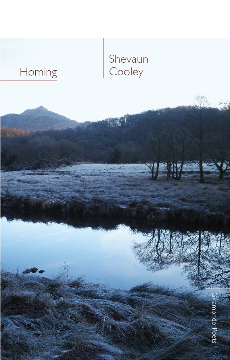 cooley_homing_bookcoverforweb Nonfiction, Book design