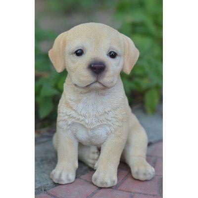 Teacup Labrador Puppy Statue In 2020 Labrador Retriever Yellow Labrador Puppy Labrador Puppy