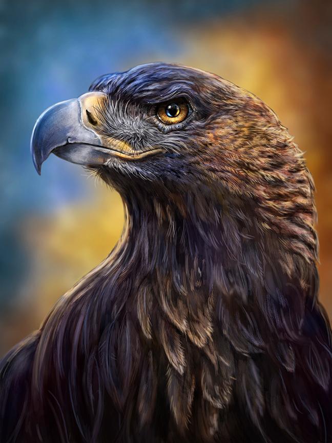 Golden Eagle Toucanvas Eagle Pictures Eagle Art Eagle Wallpaper