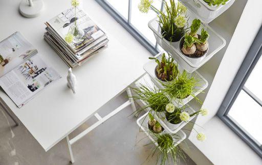 id es d co et solutions ikea jardin de plantes grasses pinterest interieur appartement et. Black Bedroom Furniture Sets. Home Design Ideas