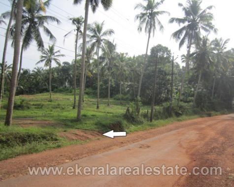 pothencode real estate thiruvananthapuram land sale