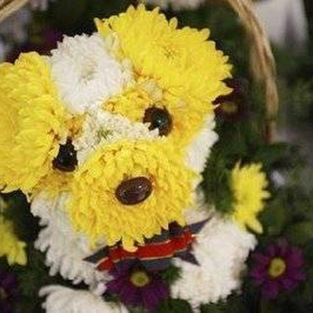 Flower Puppy! I love this one, but I would love it even more with pink flowers instead of yellow :)