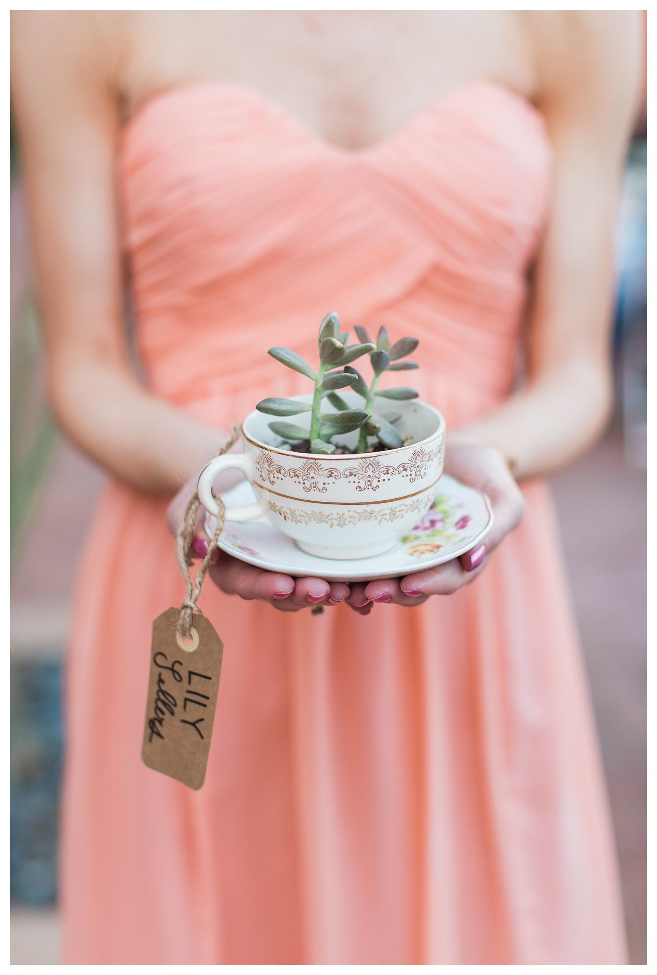 Wedding favors, escort cards, teacup favors, succulent teacup ...