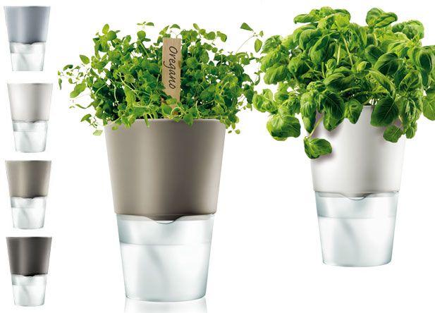 Self Watering Herb Planters