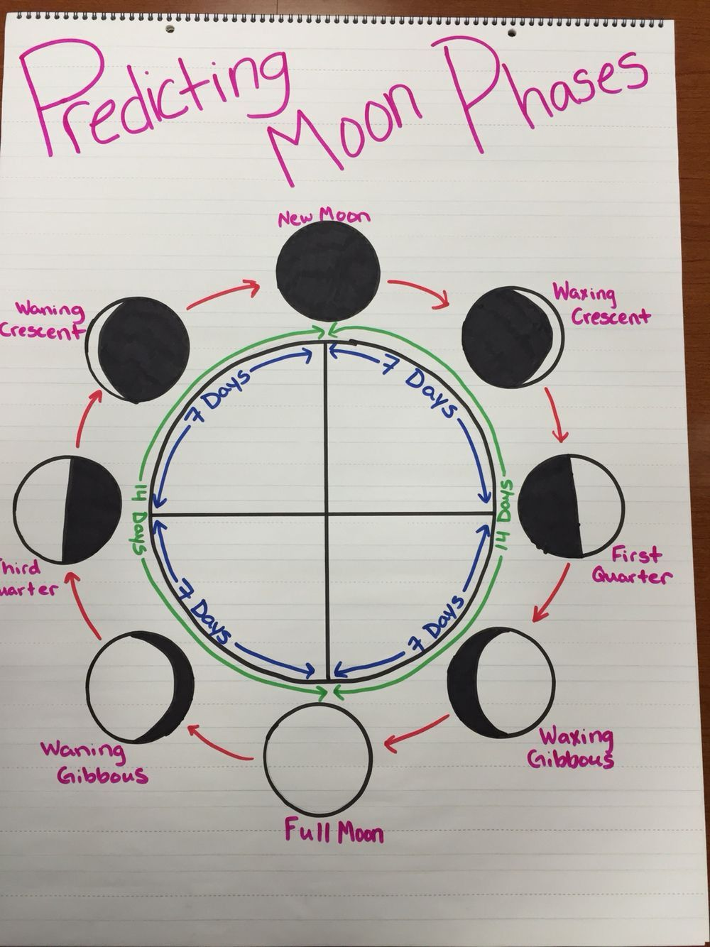 Moon Phases Worksheet 5th Grade In 2020 Science Anchor Charts Anchor Charts Middle School Science [ 1334 x 1000 Pixel ]